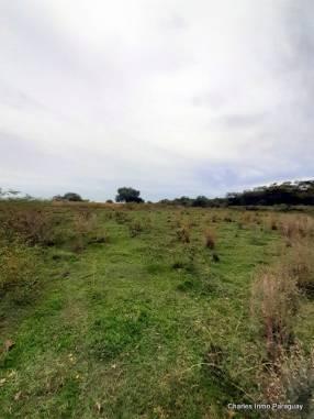 Terreno 8.5 hectáreas Acahay La Colmena