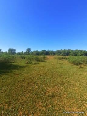 Terreno 19 hectáreas Acahay