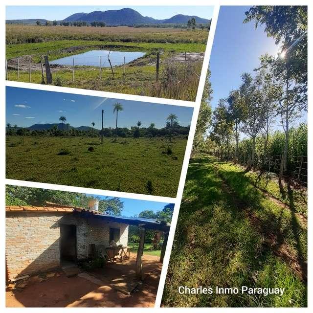 Estancia 30 hectáreas en Acahay - 6
