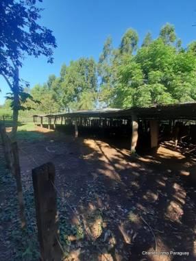 Estancia 30 hectáreas en Acahay