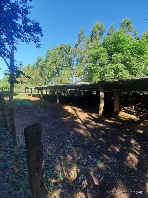 Estancia 30 hectáreas en Acahay - 0