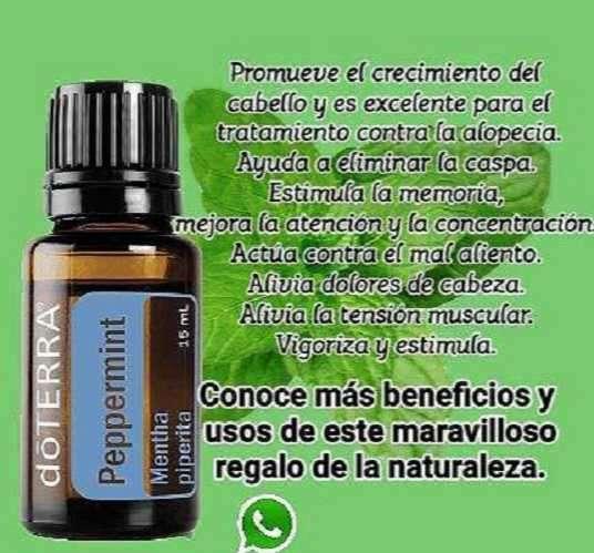 Aceite esencial de menta - 0