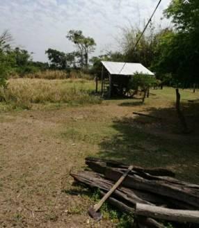 Terreno de 937 hectáreas en San José Obrero