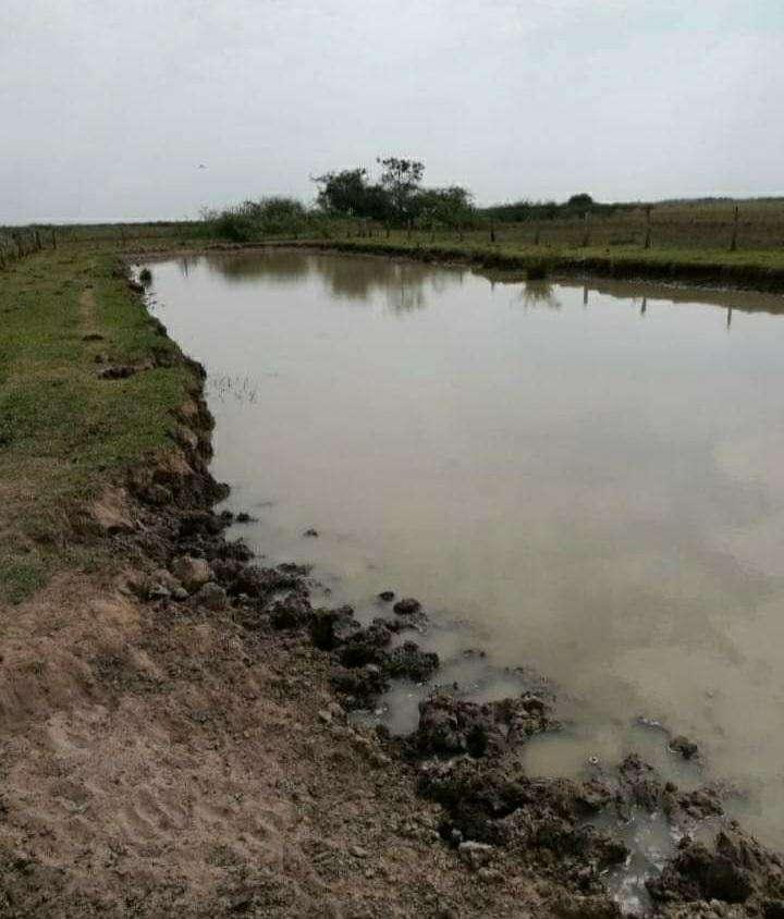 Terreno de 937 hectáreas en San José Obrero - 4