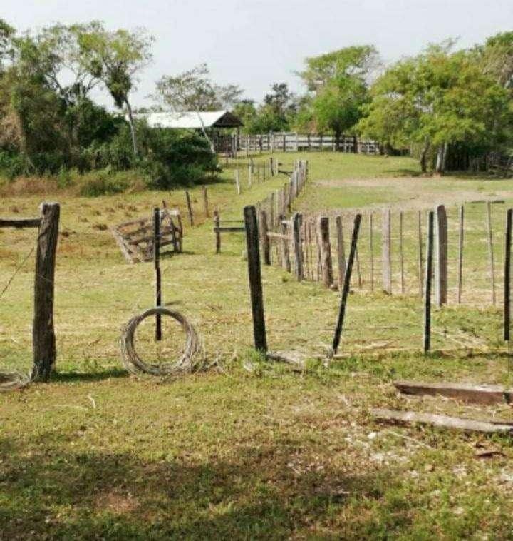 Terreno de 937 hectáreas en San José Obrero - 5