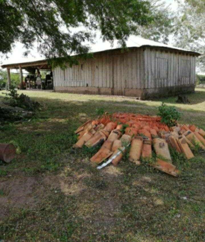 Terreno de 937 hectáreas en San José Obrero - 7