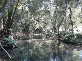 Campo en Yoveré Guairá
