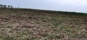 Terreno de 7 hectáreas en Benjamín Aceval