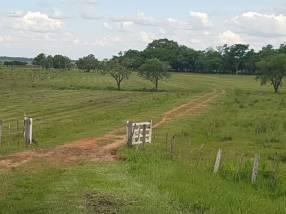 Terreno en 980 hectáreas