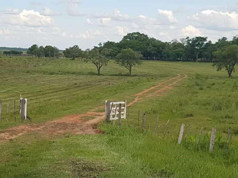 Terreno en 980 hectáreas - 0