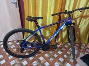 Bicicleta Phoenix aro 29.