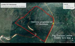 Terreno de 311 hectáreas en zona de Loreto Concepción