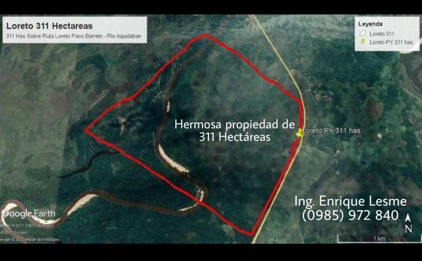 Terreno de 311 hectáreas en zona de Loreto Concepción - 0