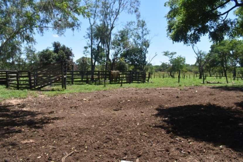 Terreno de 311 hectáreas en zona de Loreto Concepción - 1