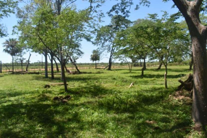 Terreno de 311 hectáreas en zona de Loreto Concepción - 2