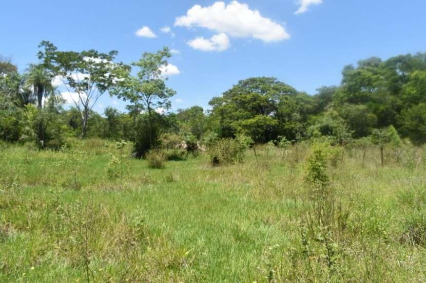 Terreno de 311 hectáreas en zona de Loreto Concepción - 3