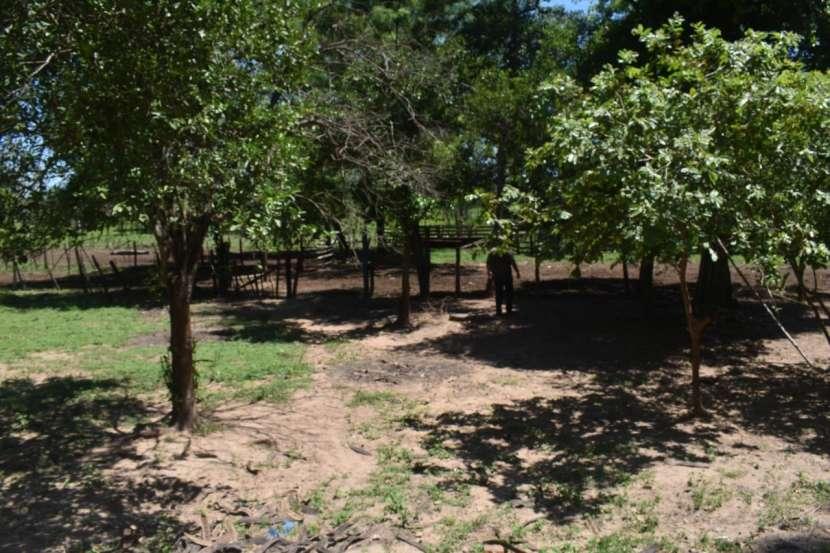 Terreno de 311 hectáreas en zona de Loreto Concepción - 4