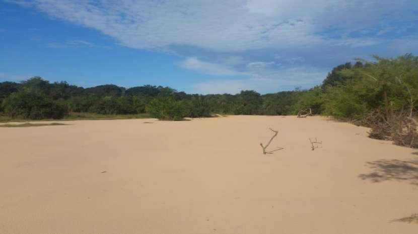 Terreno de 311 hectáreas en zona de Loreto Concepción - 5