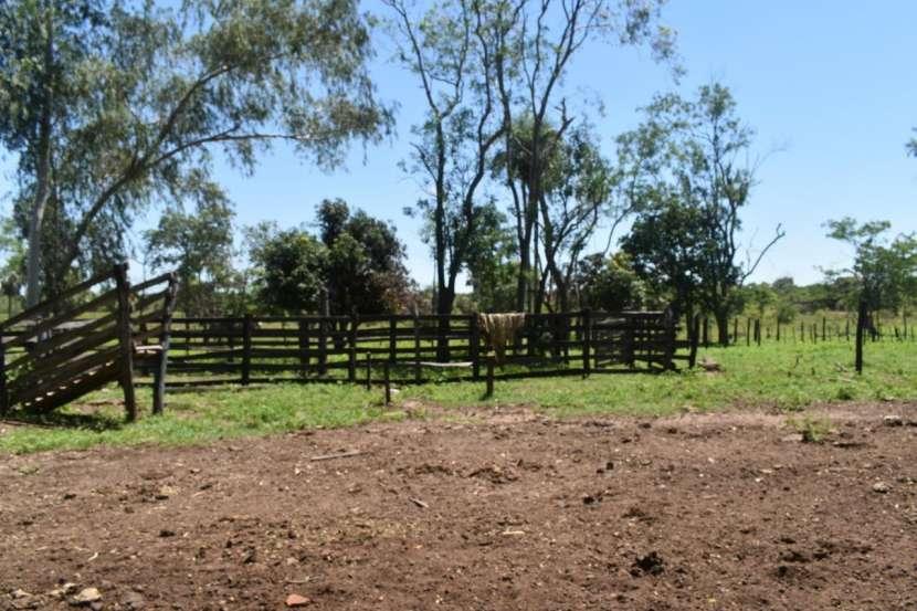 Terreno de 311 hectáreas en zona de Loreto Concepción - 7