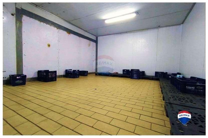 Deposito con frigorifico en amplio terreno en fernado de la mora/zona norte! - 4