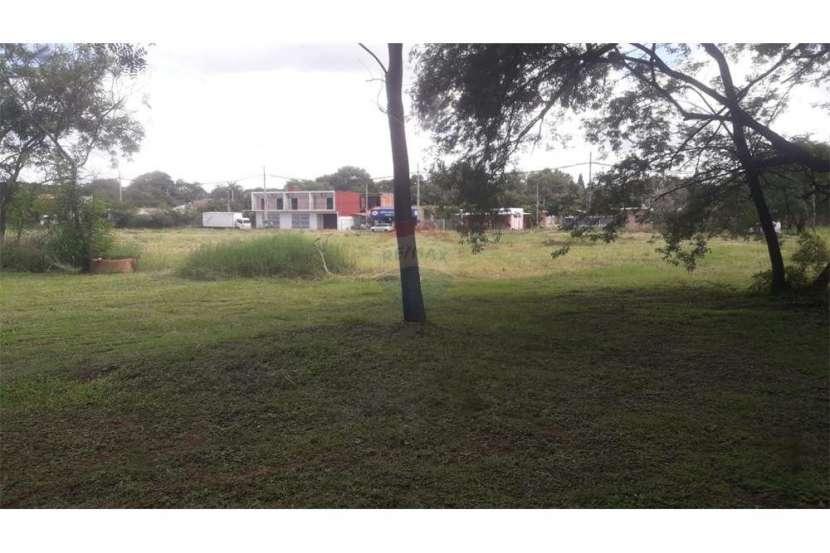 Terreno de 2 hectáreas en Luque - 1