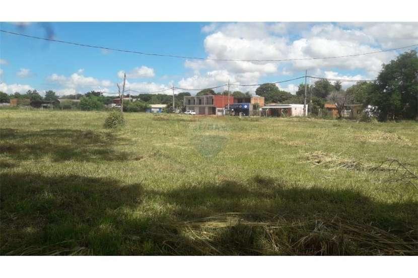 Terreno de 2 hectáreas en Luque - 0