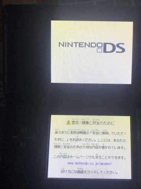 Nintendo DS edición japonesa - 1