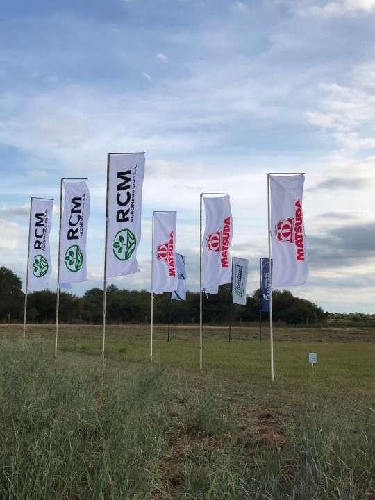 Banderas empresariales con impresión serigráfica a medida - 3
