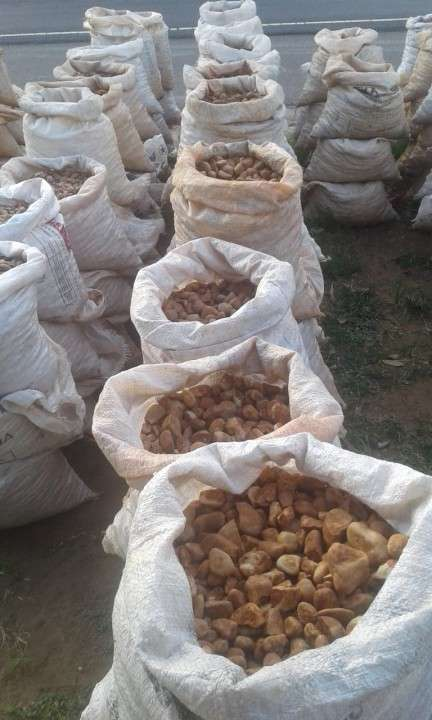 Piedras Canto Rodado - 2