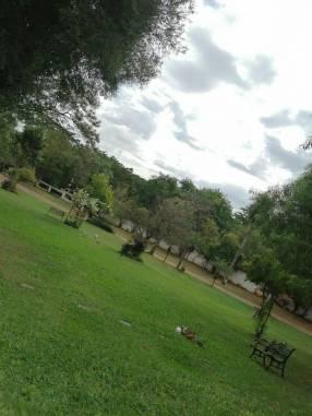 Cementerio en Limpio