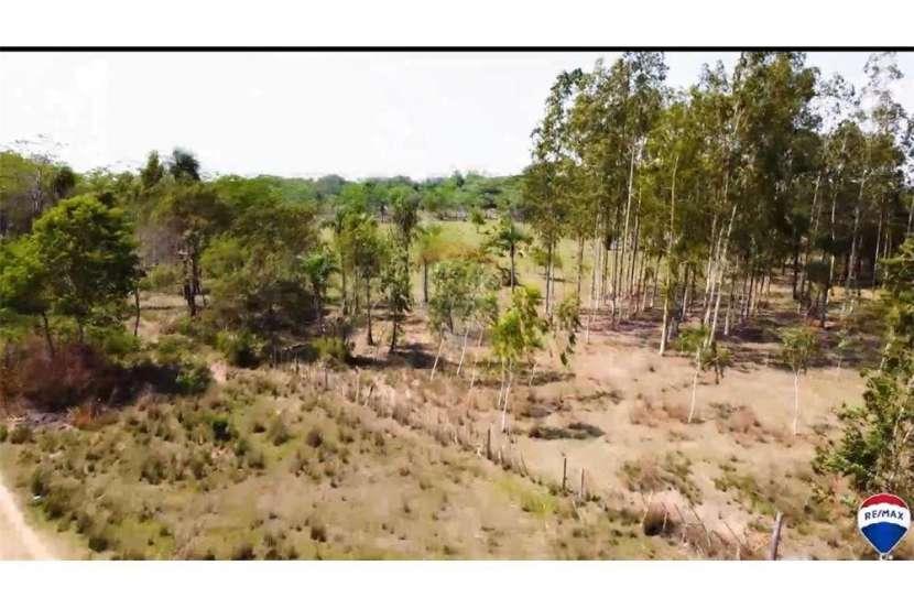 Campo para ganadería y/o agricultura en el distrito de Paraguarí - 7