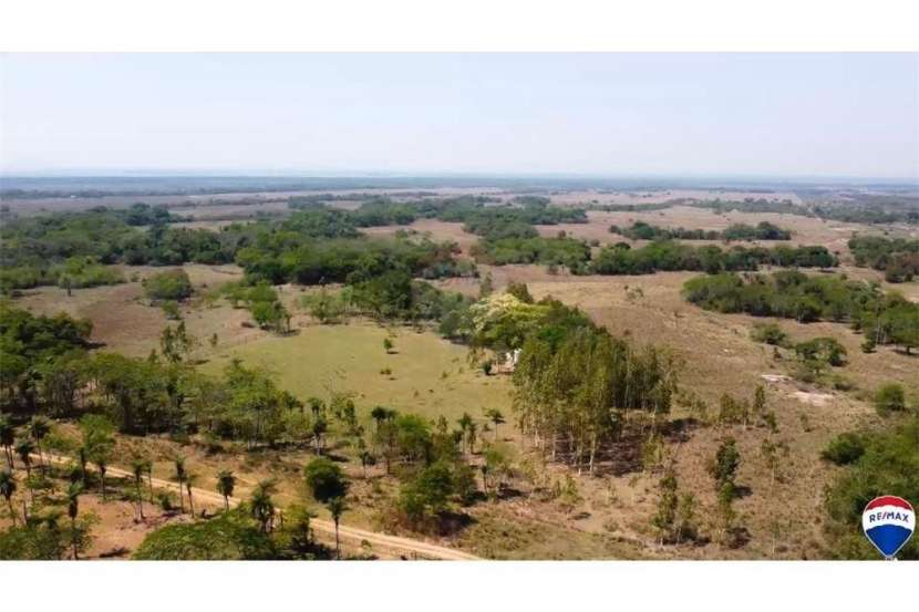 Campo para ganadería y/o agricultura en el distrito de Paraguarí - 4
