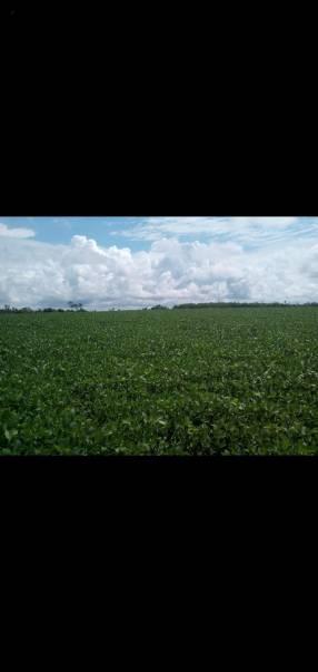 Terreno de 5.756 hectáreas
