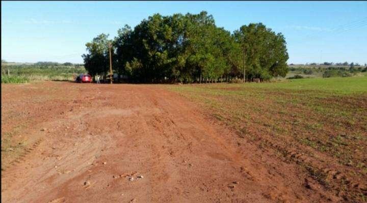 Terreno de 367 hectáreas en Santa Rita - 3