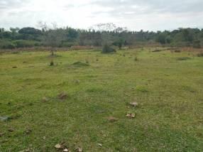 Terreno con arroyo