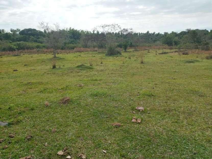 Terreno con arroyo - 0