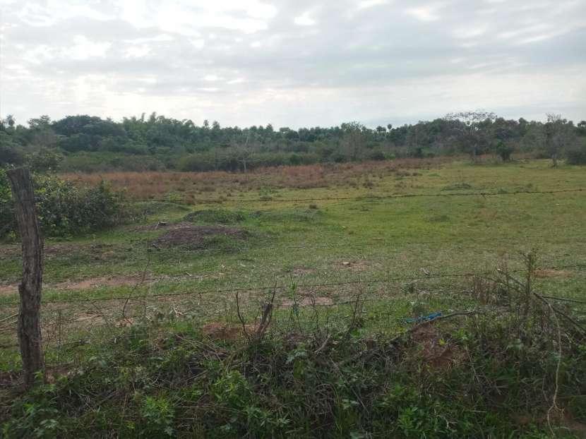 Terreno con arroyo - 3