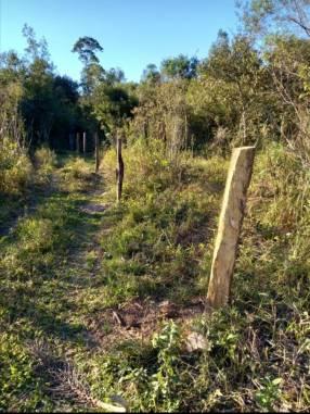 Terreno de 30 hectáreas en Carayaó