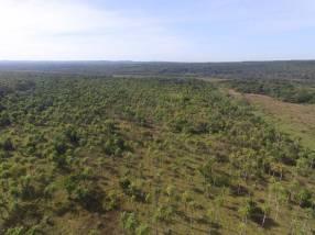 Estancia de 50 hectáreas en Caacupé