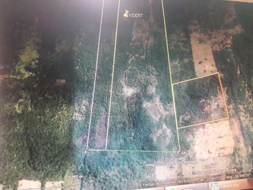 Estancia de 50 hectáreas en Caacupé - 1