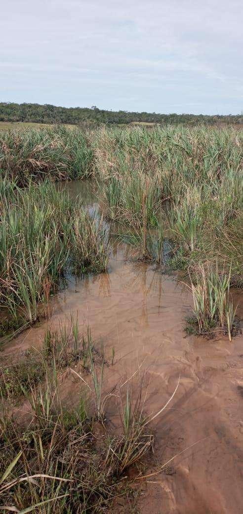 Terreno de 90 hectáreas - 1