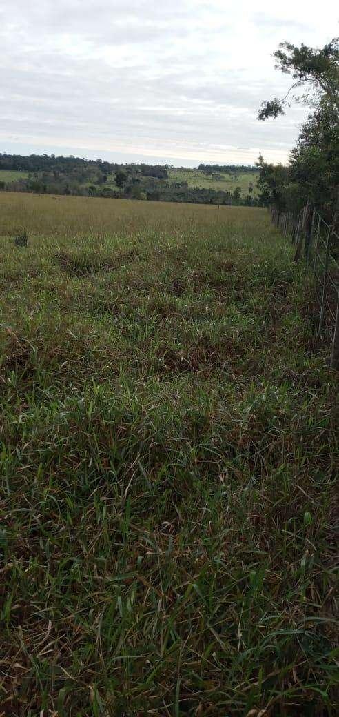 Terreno de 90 hectáreas - 2