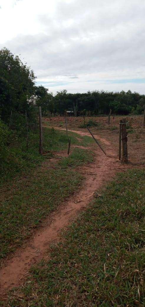 Terreno de 90 hectáreas - 3