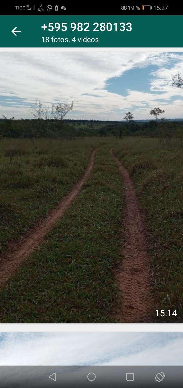 Terreno de 90 hectáreas - 5