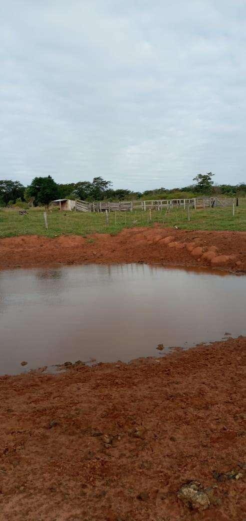 Terreno de 90 hectáreas - 6
