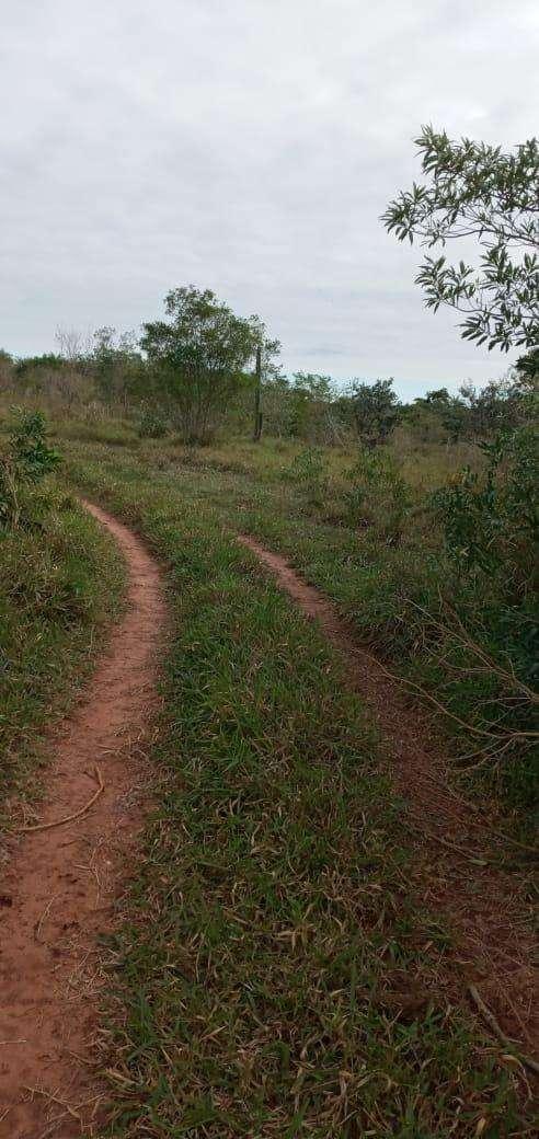 Terreno de 90 hectáreas - 7