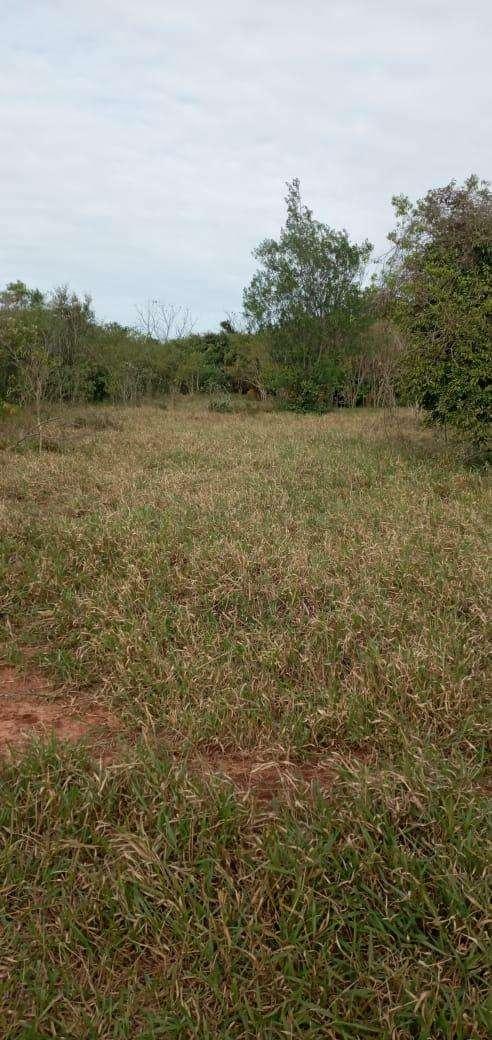 Terreno de 90 hectáreas - 8