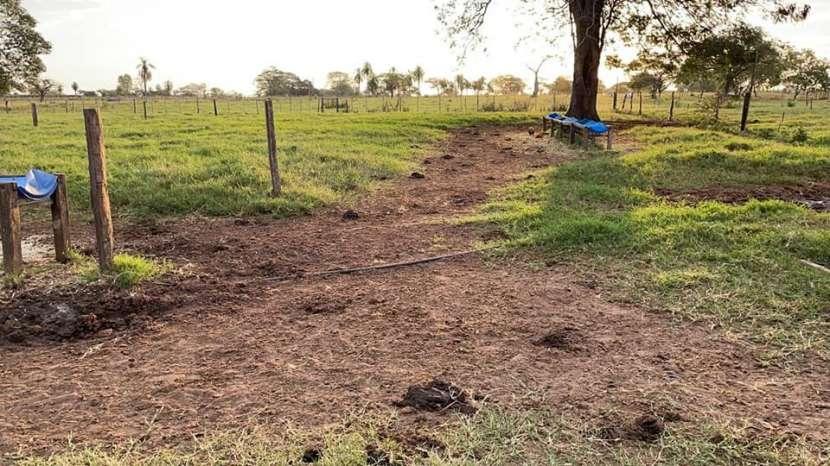 Terreno de 60 hectáreas en Hugua Rivas Concepción - 5