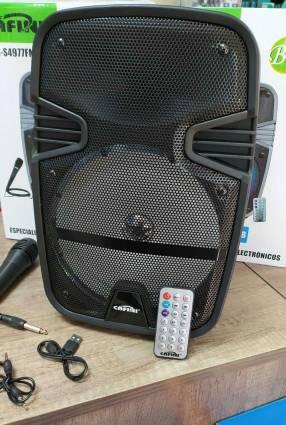 Speaker Cafini