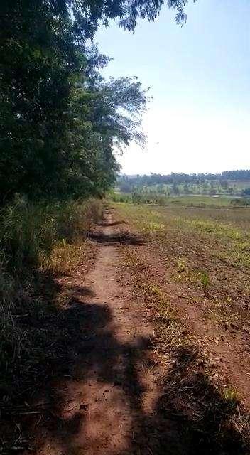 8.7 hectáreas en km 16 Acaray - 0